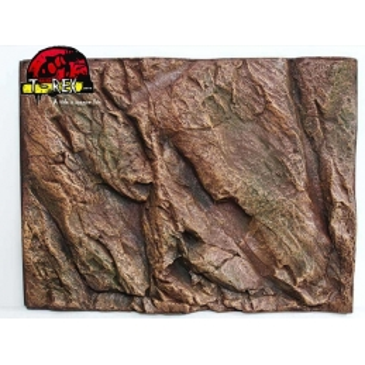 Background Rochoso 3d  Repteis | Iguana