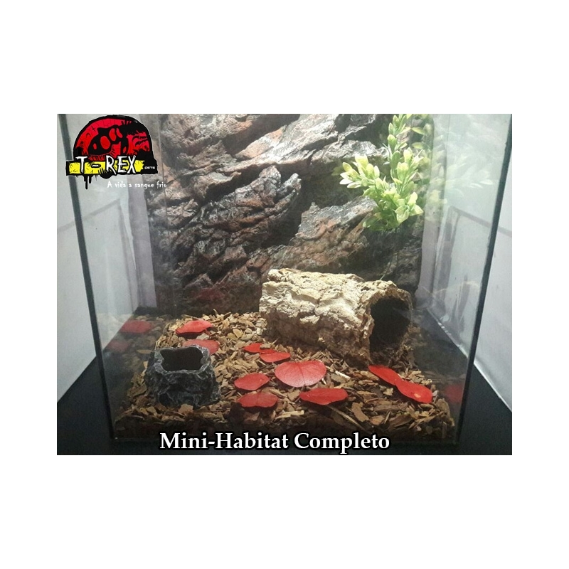 Mini-Habitat Floresta