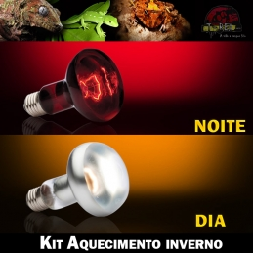 lampada aquecer terrario iguana pogona