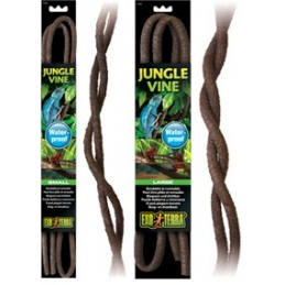 Jungle Vine